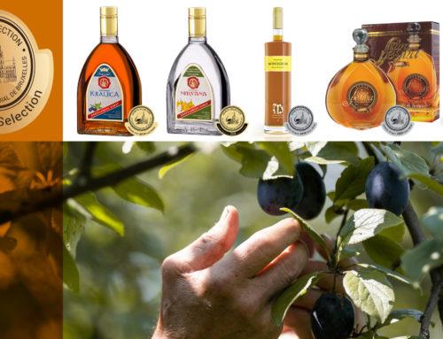 From food beverage to cocktail ingredient – fruit brandies struggle to find their niche