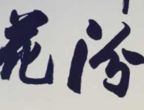 Blue and White – 杏花村 汾酒 青花 20